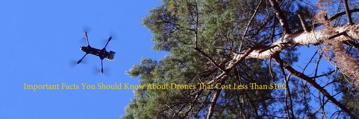 Important-Facts-You-Should-Know-About-Drones-That-Cost-Less-Than-100